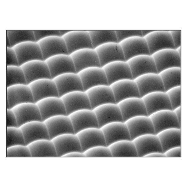 micro-lens-array-img3